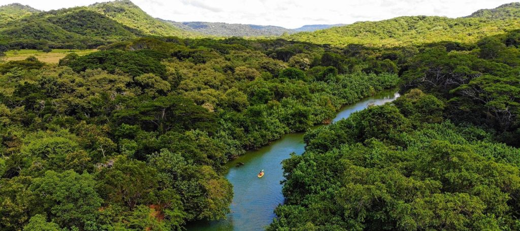 Escameca River Paddleboarding Nicaragua